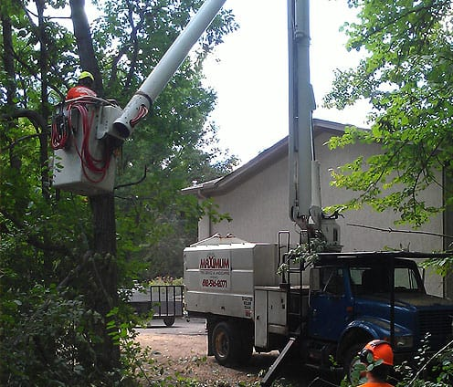 Tree Removal Bucket Truck