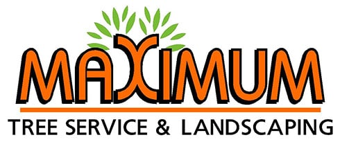 Maximum Tree Service & Landscaping