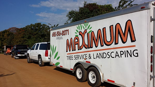 Maximum Tree Service and Landscaping