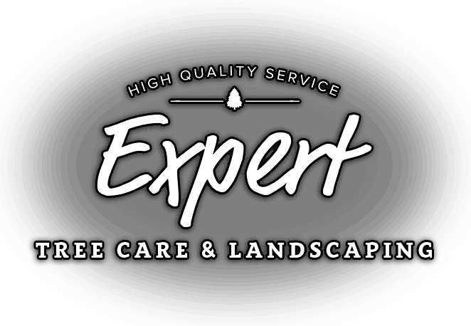 expert-tree-and-landscaping